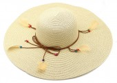 Z-A1.2 HAT504-040B Hat with Feathers Light Brown