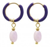 B-E6.1  E2142-033G S. Steel Earrings 1x2.5cm Amethyst