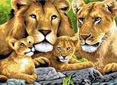 Y-A4.3  MS8243 Paint By Number Set Lions 50x40cm