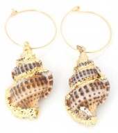 E-D18.4 E304-021 Hoop Earrings with Gold Plated Shell